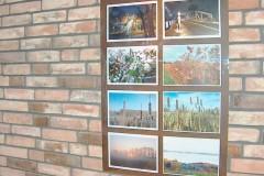 Otwarcie wystawy w Galerii HOREX - Nasze Wybrane-19.02..2014