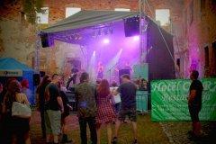 koncert-nocny-kochanek-26-08-2016-24
