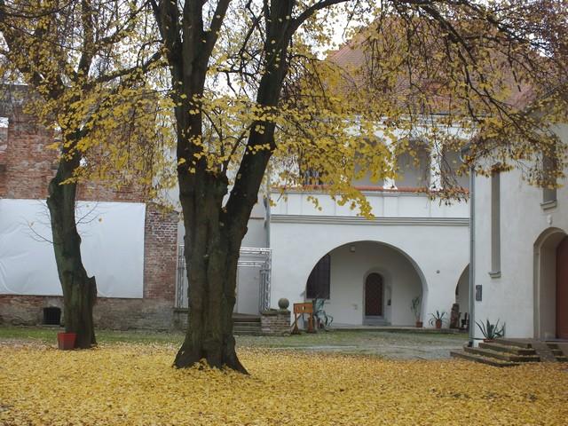 Zamek-Jesienia-14.11.2014-02